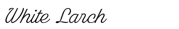 White Larch font preview